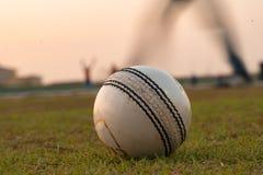 Une boule fortement utilisée pour jouer au cricket, se trouvant sur le terrain de jeu l'Inde photo libre de droits