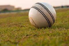 Une boule fortement utilisée pour jouer au cricket, se trouvant sur le terrain de jeu l'Inde images stock