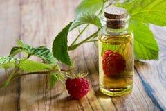 Une bouteille d'huile de graines de framboise avec les framboises fraîches Photographie stock libre de droits
