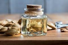 Une bouteille d'huile de noyau d'abricot avec des noyaux d'abricot Image libre de droits