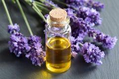 Une bouteille d'huile essentielle avec les brindilles fraîches de lavande Image libre de droits