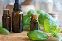 Une bouteille d'huile essentielle de basilic avec le basilic frais part Photos libres de droits