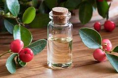 Une bouteille d'huile essentielle de gaulthérie sur un fond en bois Images stock