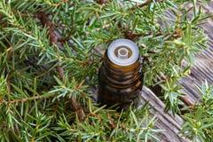 Une bouteille d'huile essentielle de genévrier avec les branches fraîches de genévrier image stock
