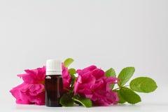 Une bouteille de pétrole rose sauvage naturel et de fleur rose fraîche - aromat Images stock