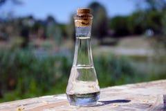 Une bouteille de schnaps Photographie stock libre de droits