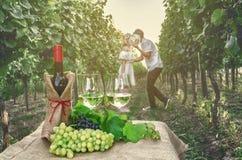 Une bouteille de vin, de vigne et de verre de vin sur le fond du Th Image libre de droits