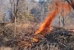 Une brûlure contrôlée dans la région sauvage photo stock