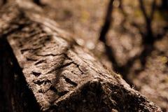 Une brame en pierre avec la séquence type arabe Image libre de droits
