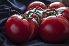 Une branche avec des mensonges rouges juteux, mûrs, lumineux de tomates sur un fond noir de tissu, dans la lumière naturelle de l photographie stock