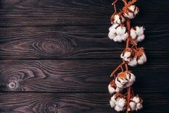 Une branche de coton sec sur une surface en bois photos stock