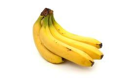 Une branche des bananes mûres Images stock