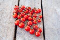 Une branche des tomates-cerises organiques rouges sur un fond en bois Image libre de droits