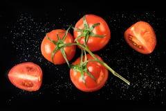 Une branche des tomates rouges fraîches sur un fond noir Images stock