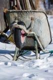 Une brouette qui a été abandonnée dans la neige Image libre de droits