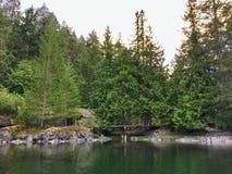 Une cabine cachée à distance couverte par des sapins photo stock