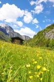 Une cabine de rondin dans les Alpes autrichiens image stock