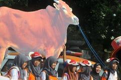 Une campagne au 'sacrifice' en avant de la célébration d'Eid Al-Adha en Indonésie Photographie stock libre de droits