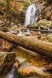 Une cascade entre après une pluie dans un canyon caché sur une montagne Photographie stock