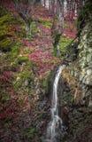 Une cascade intime en Serbie occidentale Image libre de droits