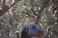 Une causerie jaune-breasted buvant d'une fontaine unique, 1 photographie stock libre de droits