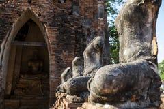 Une certaine aucune image de Bouddha de tête dans le temple Image libre de droits