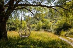 Une chaise en osier d'oscillation accroche sur une grande branche d'arbre photo stock