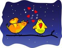Une chanson d'oiseau d'amour photo libre de droits