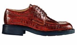 Une chaussure brune sur le blanc photo stock