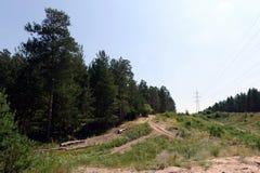 Une clairière large dans la forêt de ruban Images stock