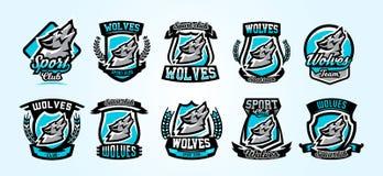 Une collection de logos colorés, emblèmes, loup hurlant à la lune, un prédateur agressif du vecteur de forêt illustration stock