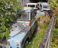 Une collection de vieille terre rouillée Rover Defenders dans un jardin avec des arbres et des buissons s'élevant autour de eux photographie stock libre de droits
