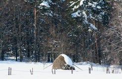 Une colline de foin sec dans les montagnes pendant l'hiver Images stock