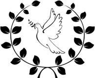 Une colombe porte un logo de branche d'olivier La guirlande des branches Photos stock