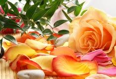 Une composition de station thermale des fleurs, des pierres et des lames Image libre de droits