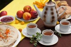 Une composition extérieure avec des tasses de thé, un pot de thé, un plat des crêpes, la pâtisserie, le fruit mûr et le champ fle Images libres de droits