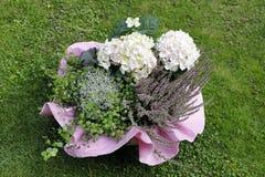 Une composition florale décorative avec les hortensias et la Bruyère images stock