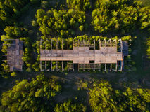 Une construction non finie et abandonnée envahie avec des arbres poires d'isolement vertes conceptuelles de fond blanches Photo stock