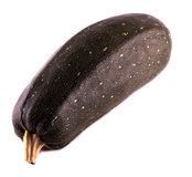 Une courgette Image stock