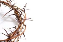 Une couronne des épines sur un fond blanc - Pâques Religion image libre de droits