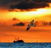 Une crevette que le bateau pêche pour sa générosité comme soleil se lève au-dessus de l'horizon photos libres de droits