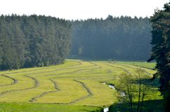 Une crique fonctionnant par un champ fauché photo libre de droits