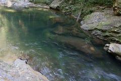 Une crique immaculée de forêt tropicale Photo stock