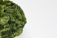 Une cuvette de légumes frais Image libre de droits