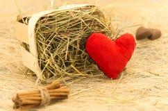 Une déclaration de l'amour Coeur, cannelle et chocolat Images stock