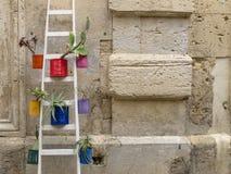 Une décoration colorée gentille vue dans la rue Photo stock