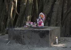 Une déesse est adorée en air ouvert sous un banian photos stock