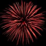 Une explosion rouge de feu d'artifice Photographie stock libre de droits