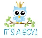 Une fête de naissance du garçon d'Itou une annonce nouveau-née illustration libre de droits