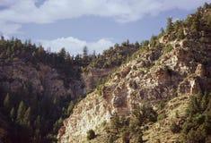 Une falaise couverte dans les arbres La falaise est à la lumière du soleil et les roches sont brun chaud, avec des ombres frappan Images libres de droits